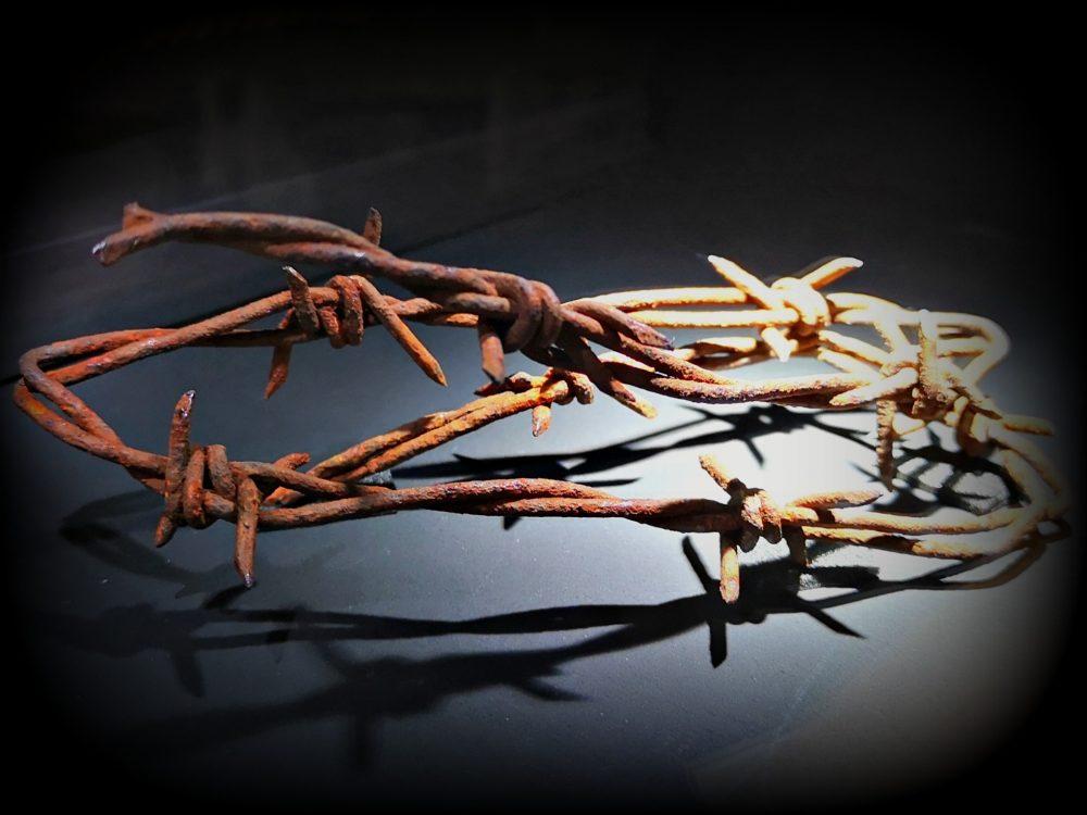 lappeteppet-teknisk-museum-piggtråd