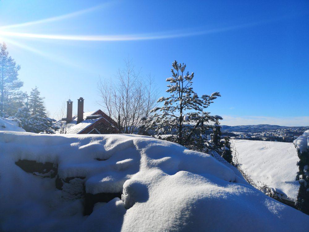 lappeteppet-snø-sol