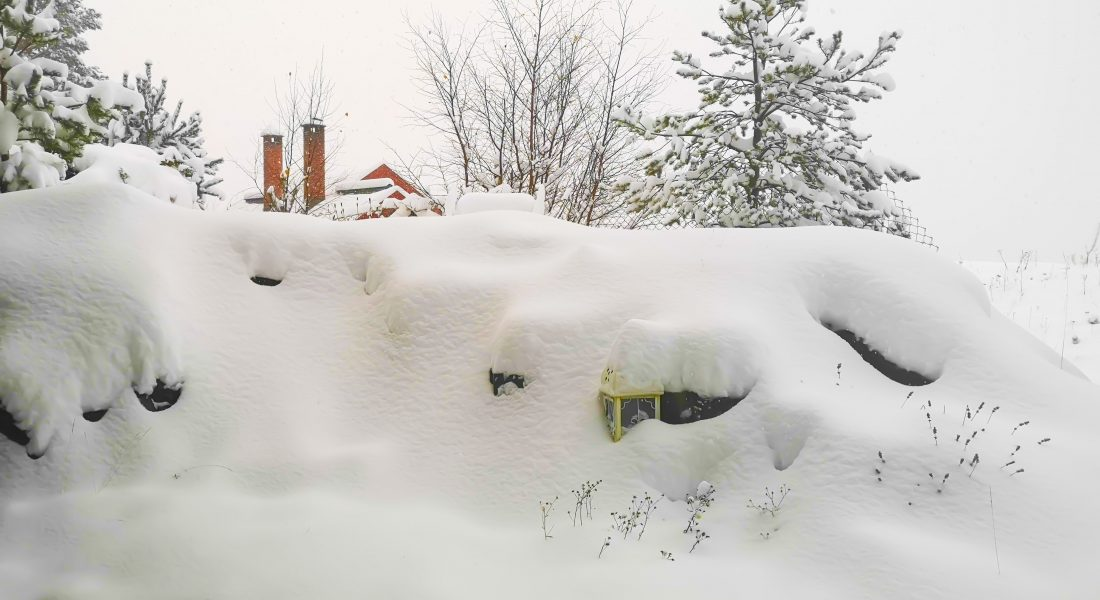 Null stress – Første snø