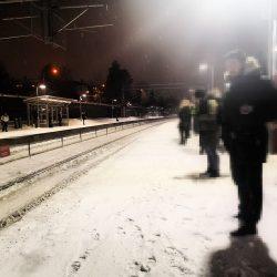 lappeteppet-vente-tog